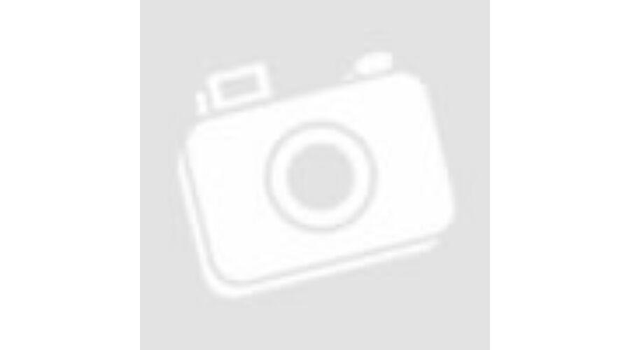75d5ee5780fa CONVERSE Chuck Taylor All Star tornacipő